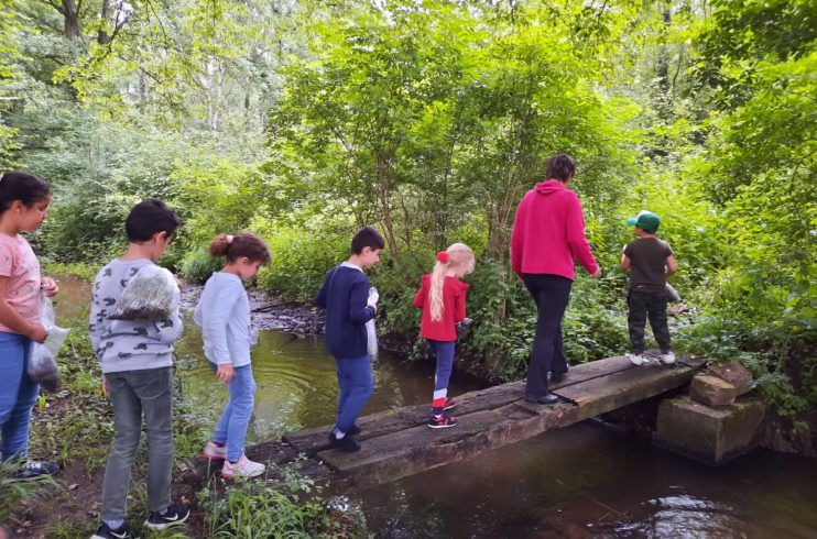 Sortie en forêt, une première pour les enfants